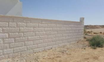 חיפוי חומת חזית, קופינג וספי חלון